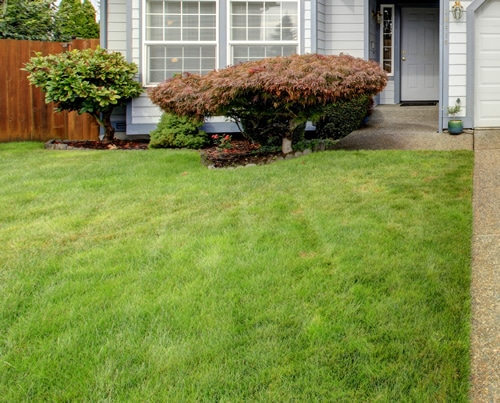 Landscaped front yard in front of Residential home